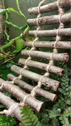 Medium walnut and jute climbing ladder for reptiles and hermit crab - Crested Gecko Habitat, Lizard Habitat, Reptile Habitat, Reptile Shop, Hermit Crab Tank, Hermit Crabs, Pet Turtle Care, Bartagamen Terrarium, Hermit Crab Habitat