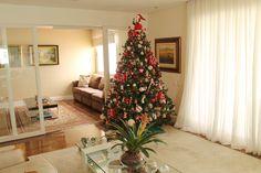 Cláudia Sonda Montagem e Desmontagem de árvore de Natal