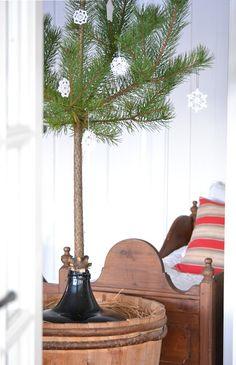 Bedroom Dreams: Resten av fjoråret Bedroom With Bath, Master Bedroom Design, Dream Bedroom, Girls Bedroom, Rest, Pine Branch, All Things Christmas, Christmas Ideas, Xmas Tree