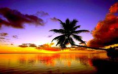 Tropical Beach Sunset Wallpaper Hd Cool 7 HD Wallpapers