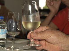 el vino producto de nuestra tierra, en catas divulgativas para todo el que quiera lo conocer D.O Manchuela