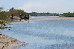 Rando à cheval au Sénégal à partir de 2075 € vols inclus pour 9 jours - http://www.randocheval.com/Programmes/ch61_senegal_sinesaloum.htm