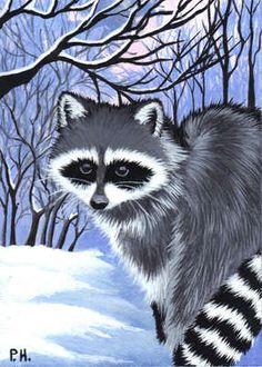 ACEO Print Raccoon Snow Woods | eBay