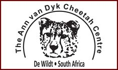 The Ann Van Dyk Cheetah Centre in South Africa was established in 1971 as a cheetah conservation project preserving and protecting cheetahs Important Dates, Conservation, Cheetah, South Africa, Centre, Ann, Helping Hands, Travel, Africa Travel
