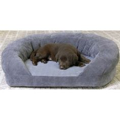 Orthopedic Sleeper Bolster Dog Bed Size: Medium (30' L x 25' W), Color: Gray Velvet ** Click image to review more details.