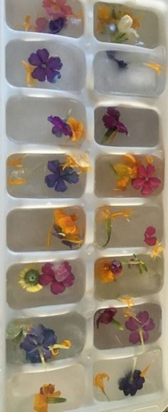 Flower ice cubes - so simple yet so pretty. Perfect for brunch drinks. I had water on one end with edible flower ice cubes floating inside. You can order fresh edible flowers on-line and have them shipped to your home. Bridal Shower Drinks, Outdoor Bridal Showers, Garden Bridal Showers, Bridal Shower Party, Bridal Shower Rustic, Bridal Shower Decorations, Bridal Shower Foods, Bridal Shower Flowers, Themed Bridal Showers