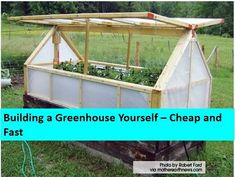 phoenix treasures - Building a Greenhouse Yourself – Cheap and Fast