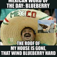 Mexican Word of the Day » Blueberry