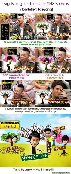 Big Bang as trees | allkpop Meme Center