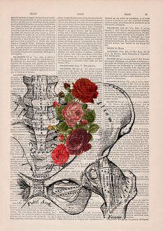 Springtime Pelvis Decorative Art Flowers on Skull Nature