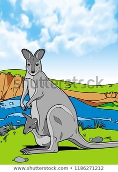 Kangaroo Mammals Animal Illustration with smooth graphics and full coloring. So that the illustration of this Kangaroo animals will be interesting when used as an image of supporting material, or to be seen. Mammals, Kangaroo, Scooby Doo, Royalty Free Stock Photos, Coloring, Smooth, Graphics, Animal, Illustration