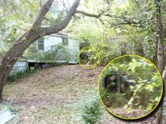 In November, 2009, there were two separate cases in which ghosts may have led paranormal investigators to discover buried bones.............................