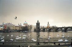 Prague Czech Republic, Prague, New York Skyline, Louvre, Building, Photography, Travel, Photograph, Viajes