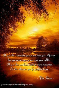 L'Amour, la Mémoire          L'amour perdu est encore de l'amour. Il prend une forme différente, c'est tout...