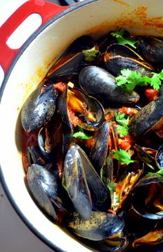 Mussels and Chorizo Spicy Mussels and Chorizo: my hubby would love these!Spicy Mussels and Chorizo: my hubby would love these! Healthy Soup Recipes, Fish Recipes, Seafood Recipes, Cooking Recipes, What's Cooking, Seafood Dishes, Fish And Seafood, Jai Faim, Chorizo Recipes