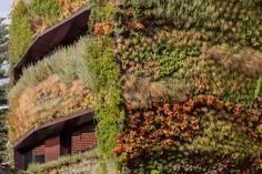 A Plant Covered Home: House Patrocinio by Rebelo de Andrade in architecture  Category