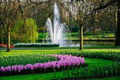 Beautiful French Flower Garden   Keukenhof Spring Tulip Gardens, Lisse, The Netherlands   Alison ...