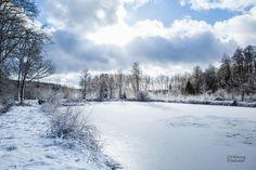 Etang gelé à Sécheval © Thierry MICHEL #Ardennes #France
