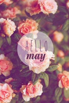 happy may 1st!