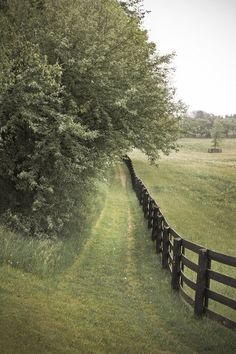 awomaninscience: thegiftsoflife: the farm. ...