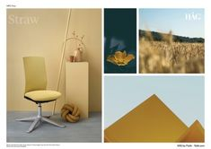 HAG Futu from Back in Action - leading back pain experts. HAG Futu on fast delivery. Spring Colors, Color Inspiration, Colours, Chair, Offices, Simple, Interior, Landscapes, Paisajes