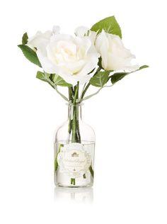 Palais Royal 5.4-Oz. Botanical Diffuser, White Rose, http://www.myhabit.com/redirect/ref=qd_sw_dp_pi_li?url=http%3A%2F%2Fwww.myhabit.com%2F%3F%23page%3Dd%26dept%3Dhome%26sale%3DA1QU6OHJBKLU41%26asin%3DB00CFW8HWE%26cAsin%3DB00CFW8HWE