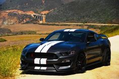 Ford Mustang Shelby GT350R 2016❤❤❤❤❤❤❤❤❤