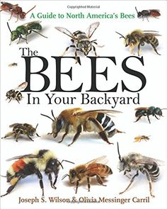 The Bees in Your Backyard: A Guide to North America's Bees.  You can download or read this book, click link or paste url: http://bit.ly/1WRm7XB
