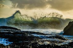 Snapper Rocks by cscapephotos