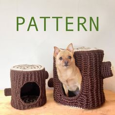 How To Find Cheap Pet Insurance – Animal Health Info Animal Room, Craft Font, Very Small Dogs, Cheap Pet Insurance, Crochet Cactus, Grafik Design, Diy Stuffed Animals, Crochet Animals, Guinea Pigs