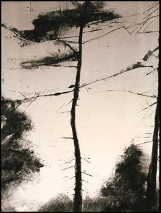 Faire la part des choses ///////////////////////////////////////////////////////////////wendy orville monotypes
