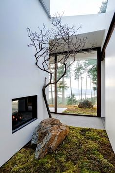 Una casa sostenible en un bosque · A sustainable home in a forest