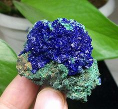 Electric-Royal-Blue-Azurite-on-Green-Malachite-Mineral-Specimen-Anhui-China-952