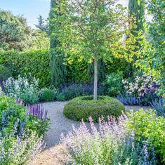 Deseando que llegue la primavera . Jardín en Madrid . #fernandomartosjardines #jardin #garden #gardendesign #landscapedesign