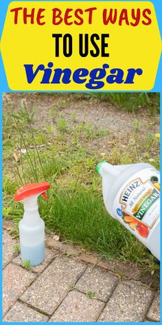 Amazing ways to use vinegar both in and outside your house to clean. These tips and tricks will blow your mind. #easycleaning #cleaninghacks #householdhacks #cleaningtips #householdtips #cleanerrecipe #vinegar