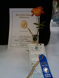 Chris VanCleave brings home Certificate of Excellence with Authentic Haven Brand fed rose 'Tiddley Winks'