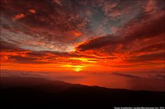 Севастополь LIFE - Последний рассвет планеты