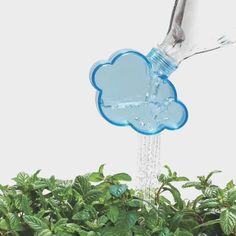 Fancy - Rainmaker Watering Cap
