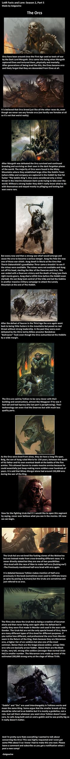 LotR Facts/Lore