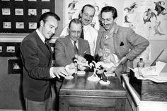 *Walt Disney*
