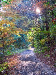 Creeper Trail ~ Damascus ~ Virginia