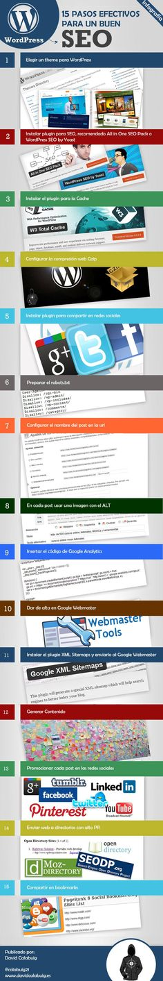 infografia optimizar el SEOWordPress