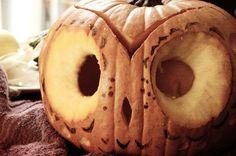 DIY: owl pumpkin