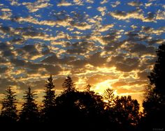 A Beautiful Blue and Gold Morning by RDColwellArtPrints on Etsy, $15.00