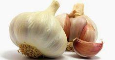 Manfaat Khasiat Mengolah Bawang Putih Untuk Kesehatan | Tips Sehat | http://updatesehat.blogspot.com/2014/05/manfaat-dan-khasiat-bawang-putih-allium.html