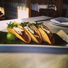 #SPECIALS #West Hartford, #CT 1-18-13 ~Taquitos de Puerco: 3 crispy pork #tacos topped w/ a jicama salad & #avocado lime aioli     ~Enchilada de Pato: 2 corn #tortillas stuffed with roasted duck & baked in mole #amarillo, garnished w/shredded lettuce, queso fresco & #sesame seeds