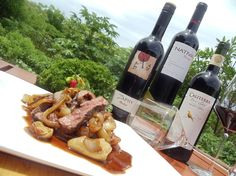 Red wines from our new organic wine list at Caracol steakhouse at Four Seasons Costa Rica paired with skirt steak with balsamic red onions.