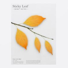 Appree Birch leaf brown sticky memo notes Large by Appree. Feel relaxed and peaceful nature in buildings during busy everyday life. Note Memo, Small Leaf, Scrapbook Journal, Japanese Design, Browning, Sticky Notes, Cute Designs, Different Styles, Organisation
