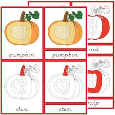 The Helpful Garden: Parts of the Skeleton and Parts of the Pumpkin Nomenclature Cards with Blackline Masters