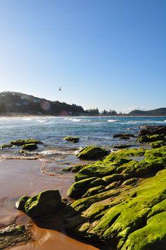 North Beaches, #Sydney